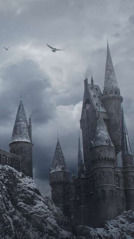 Hogwarts in the Snow Handy Vertikal Hintergrundbild